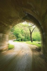 Nature Photographer in West Virginia